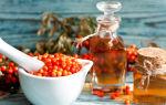 Облепиховое масло: применение и лечебные свойства, противопоказания
