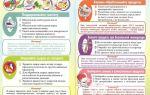 Кишечная инфекция: причины появления, симптомы и лечение у взрослых