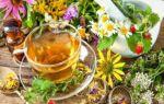 Лечение панкреатита народными средствами, самые эффективные рецепты в домашних условиях