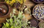 Лечение гастрита желудка и язвы народными средствами — травы