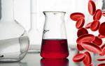 Повышенный белок в крови: причины у ребенка и взрослого