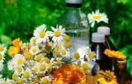 Хронический гастродуоденит: лечение народными средствами и травами