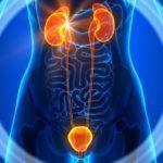 Что делать если болит живот и тошнит - крутит живот у женщин