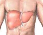 Гепатомегалия печени: причины и симптомы, лечение и профилактика