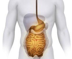 Как избавиться от желчи в желудке народными средствами и лекарствами